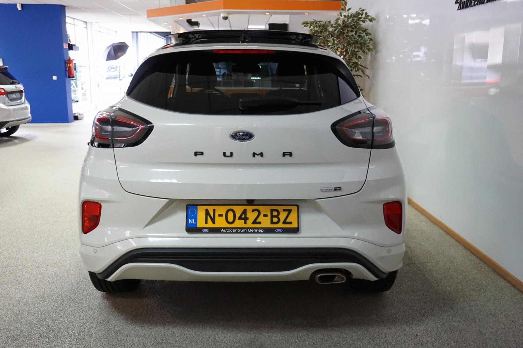 Ford-Puma-14